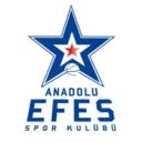 efeslogo 128x128 - Евролига